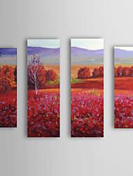 Óleo pintado mão Pintura Paisagem campo vermelho com Set quadro esticada de 4