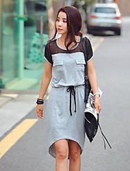 Feminino Estilo coreano Chiffon costura Andorinha Vestido