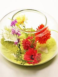 Garden Theme Transparent Glass Vase   Table Deocrations (Sand Included,Flowers Not Included)