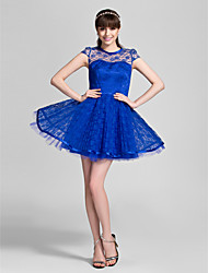 Short/Mini Lace Bridesmaid Dress - Royal Blue Plus Sizes A-line/Princess Jewel