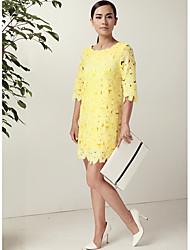 Women's Dresses , Lace JRY