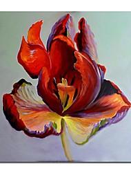 Óleo pintado mão Pintura Floral Flor Vermelha Único, com quadro esticado