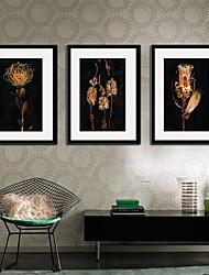 La Flor de La Noche Framed Canvas Print Juego de 3