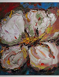 Hand Painted Oil Painting Floral Single Flower  with Stretched Frame