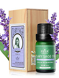 Isilandon Shrinking Pores and Hair Protection Happy Sage Essential Oil 10ml