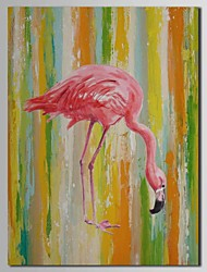 Hand Painted Oil Painting Animal Flamingo with Stretched Frame
