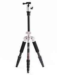 Fotopro X4i-E Recorrido al aire libre de aluminio-magnesio aleación telescópico Trípode para cámara réflex digital (oro)
