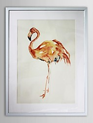 Animal Flamingo  Framed Art Print