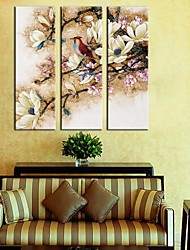 Stretched Canvas Art  Flowers & Birds Set of 3