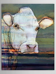 Hand Painted Oil Painting Animal Cow Painting with Stretched Frame