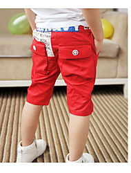 Boy's Cotton Leggings,Summer Solid