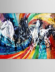 Hand Painted Oil Painting Animal Running Horses with Stretched Frame