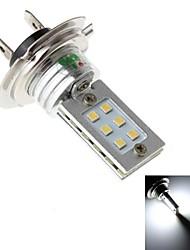 Linterna de Cabeza ( 6000K , De Alto Rendimiento ) - LED