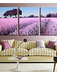 Personalized Canvas Print  Stretched Canvas Art  Lavender  35x50cm  40x60cm  50x70cm  Gallery Wrapped Artof 3