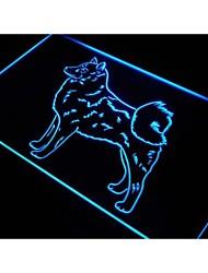 j533 finlandais spitz chien signe boutique bar à bière au néon de lumière