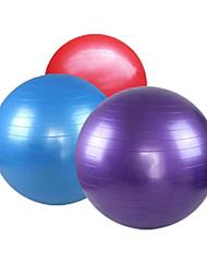 Balance the Body Massage Fitness Yoga Ball