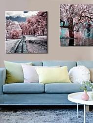 colores del invierno de arte lienzo estiradas juego de 2