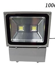 100w proiettore 2 led IP65 impermeabile bianco bianco caldo led AC85-265V alluminio