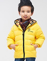 Boy's Silk Down & Cotton Padded,Winter Solid