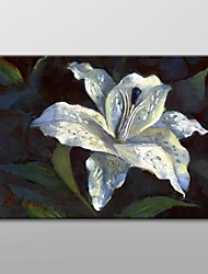 Hand Painted Oil Painting Floral White Lily by Hall Groat II with Stretched Frame