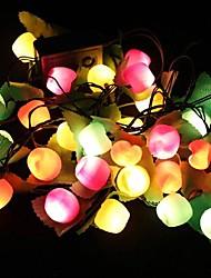 lumières spéciales lumières de Noël DEL fruits changent la partie