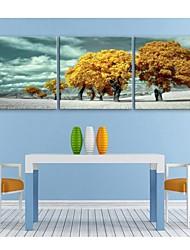 е-Home® растягивается холсте желтый дерева декоративной живописи набор 3