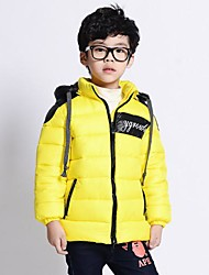 Boy's Stitching Patched Thickness Hoodie Down(Zipper & Print Color Random)