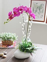 """Simulation de style des ménages """"22 h noble de rosée orchidée papillon avec vase en céramique ovale"""