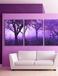 е-Home® растягивается во главе холст Печать на холсте, фиолетовые деревья эффект вспышки привело набор 3