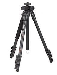 Benro a1980f série multifunções câmera SLR profissional tripé de alumínio portátil