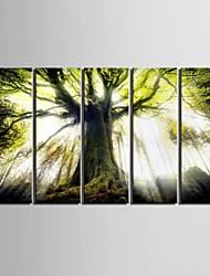 Landscape Modern,Five Panels Vertical Print Wall Decor For Home Decoration