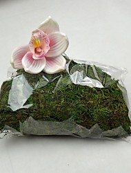 Green Dry Moss 350g/Bag for Vase and Flower Decoration