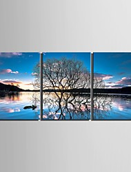 Canvas Set Landscape Floral/BotanicalThree Panels Vertical Print Wall Decor For Home Decoration