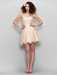 TS Couture® Cocktail Party Dress - Champagne Plus Sizes / Petite A-line Sweetheart Short/Mini Lace