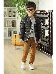 Boy's Polyester Down & Cotton Padded , Winter Long Sleeve