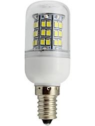 Dekorativ Mais-Birnen E14 3.5 W 280-320 LM white(5000-6500k) / warm white(2800-3500K) K 48 SMD 2835 Warmes Weiß/Kühles Weiß AC 100-240 V