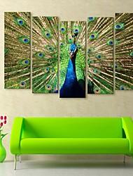e-FOYER toile tendue art de paon peinture décorative série de cinq