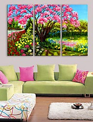 E-HOME® Stretched Canvas Art Garden Decoration Painting  Set of 3