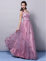 TS Couture® Formal Evening Dress Plus Size / Petite A-line / Princess V-neck Floor-length Tulle with Appliques / Flower(s)