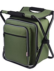 CarSetCity Ice-Bag Picnic For Seat Green/ Red