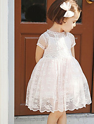 Girl's Lace princess dress