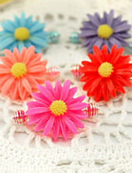 Girl's Cute Flowers 2 Pairs Hair Accessories Clips & Claws