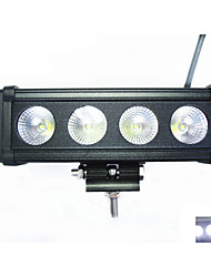 Carmen ® 40W  Strip Concentrated  Working Light CREE   LEDS  CAR /SUV Waterproof 6000K