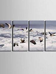 E-HOME® Stretched Canvas Art Bird Decoration Painting  Set of 4