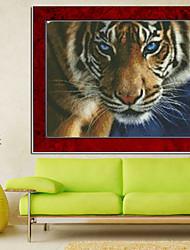 o olho das agulhas de tricô tigre set diamante vivendo quarto ponto cruz decoração da casa parede bordados 58 * 43 centímetros
