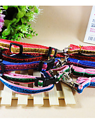 Patch Gold Lace Collar The Blister Pack For Dogs