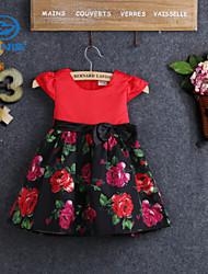 CANIS@Girls' Princess Flower Print Bow Dress