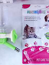 Water Head  Ml Kettle For Dogs