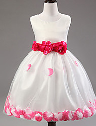 A-line Tea-length Flower Girl Dress - Cotton / Lace / Tulle / Polyester Sleeveless