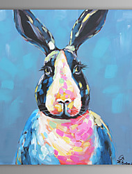 Oil Painting Modern Abstract Rabbit Hand Painted Canvas with Stretched Frame